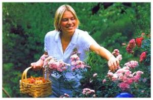 Как лучше ухаживать за садом