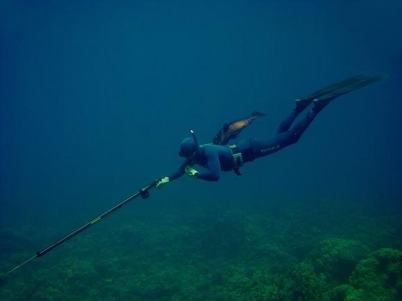 Основные виды ружей для подводной охоты
