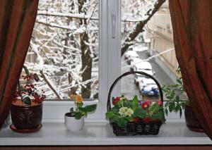 Пластиковые окна – роскошь или необходимость